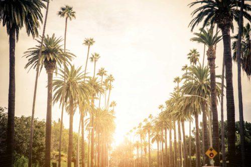 Beverly_Hills_California